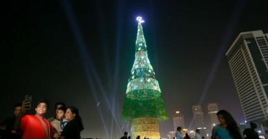 Ngắm cây thông Noel vừa lập kỷ lục cao nhất thế giới