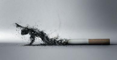 Ném đầu thuốc lá xuống đường bị phạt một triệu đồng