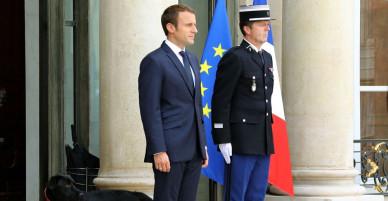 """Tổng thống Pháp """"bẽ mặt"""" vì chó cưng bất ngờ tè bậy giữa cuộc họp cấp cao"""